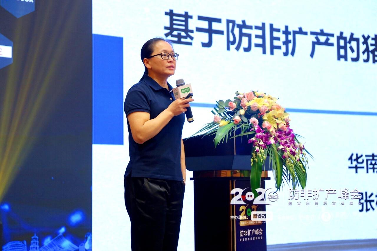 2020新猪派生猪产业峰会现场报告花絮